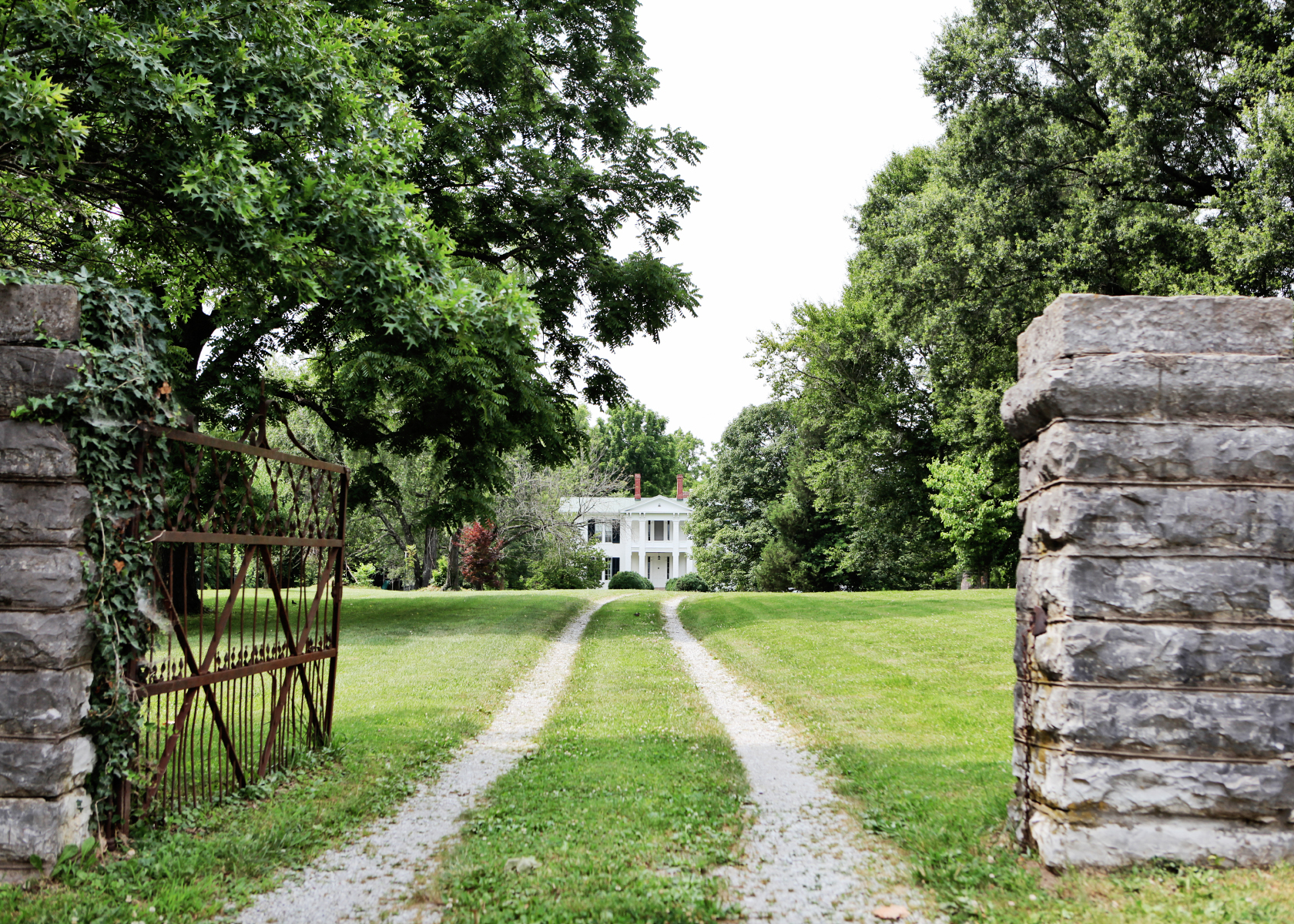 What to see and do in Lexington, Kentucky.